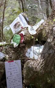 Treedom024